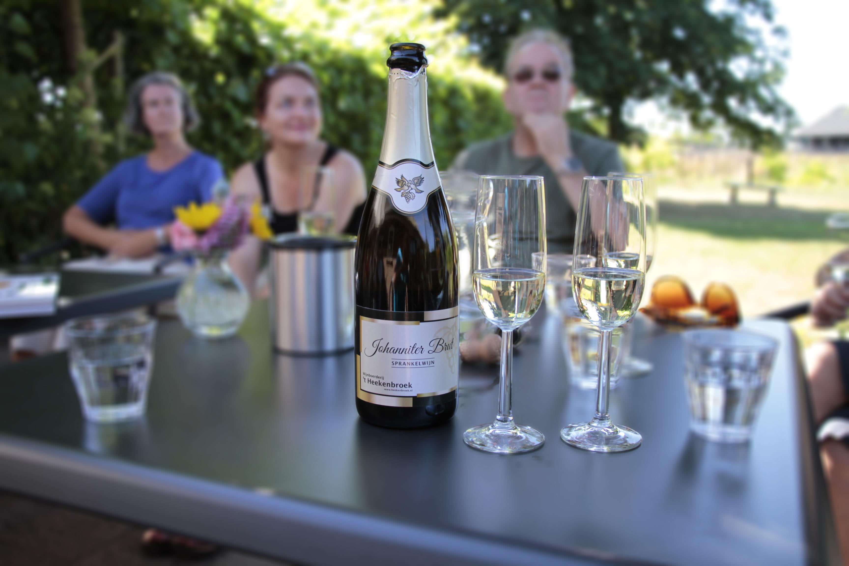 Wijngaard bezoeken Nederland Drempt